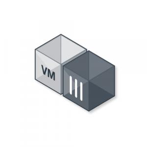 FortiGate-VM01V (FG-VM01V)